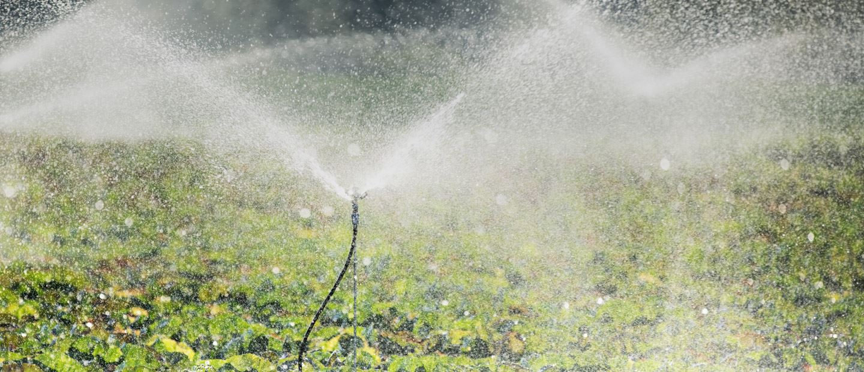 Sprinkler Irrigation System in India | Micro Sprinkler ... on