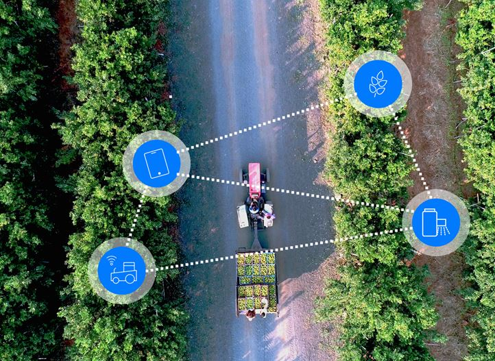 Digital Farming field